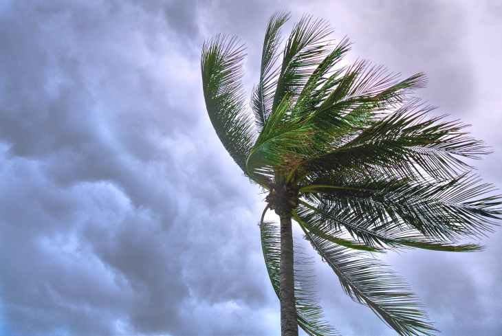 storm tropical Isaias
